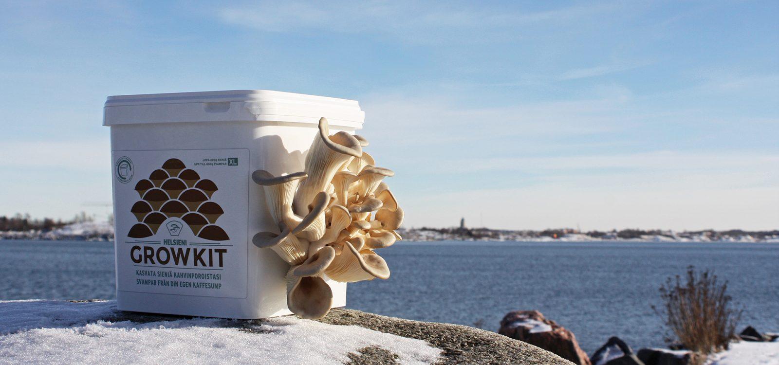 Helsieni – Mushrooms from Helsinki